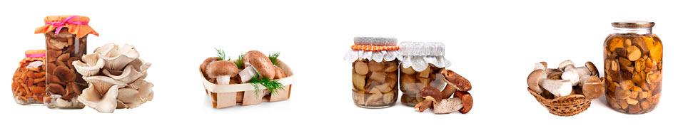 грибы-на-зиму-рецепты-приготовления-.jpg