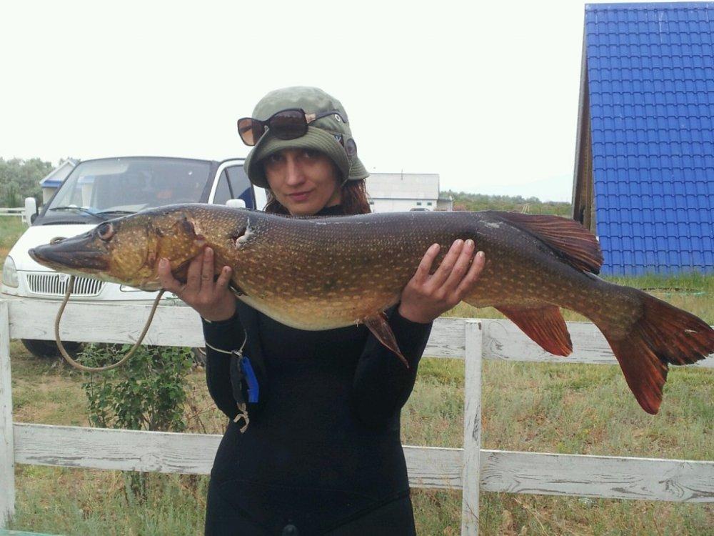 в астрахани рыболовный турнир