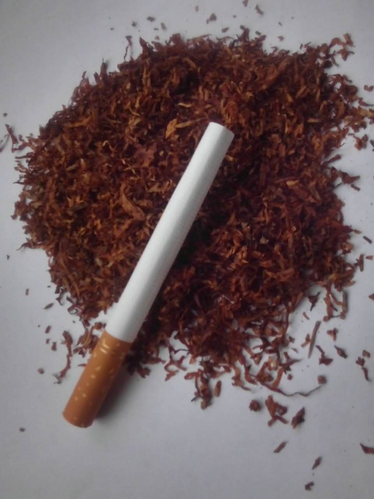 купить табак для сигарет форум