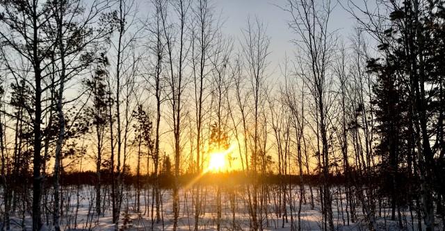 Доброе утро зимнее (50 фото) Потрясающая зимняя природа