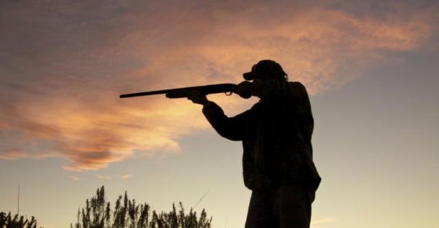 В Госдуму внесли проект об охотниках, регулирующих численность животных