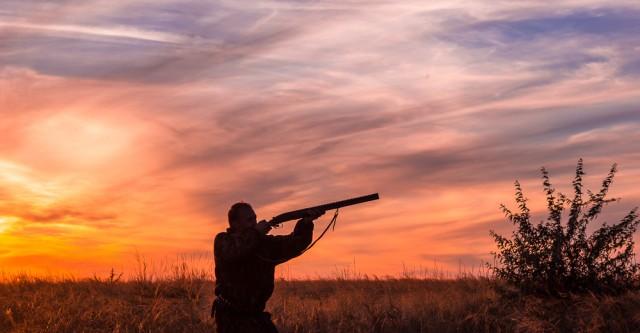 В Якутии решат, будет ли запрещена весенняя охота