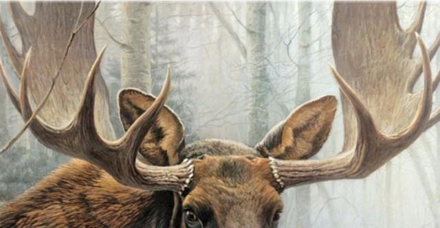 Рецидивиста подозревают в незаконной охоте в Новосибирской области