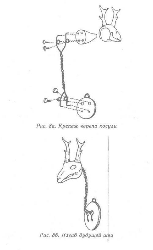Изготовление чучел / Сибирский охотник