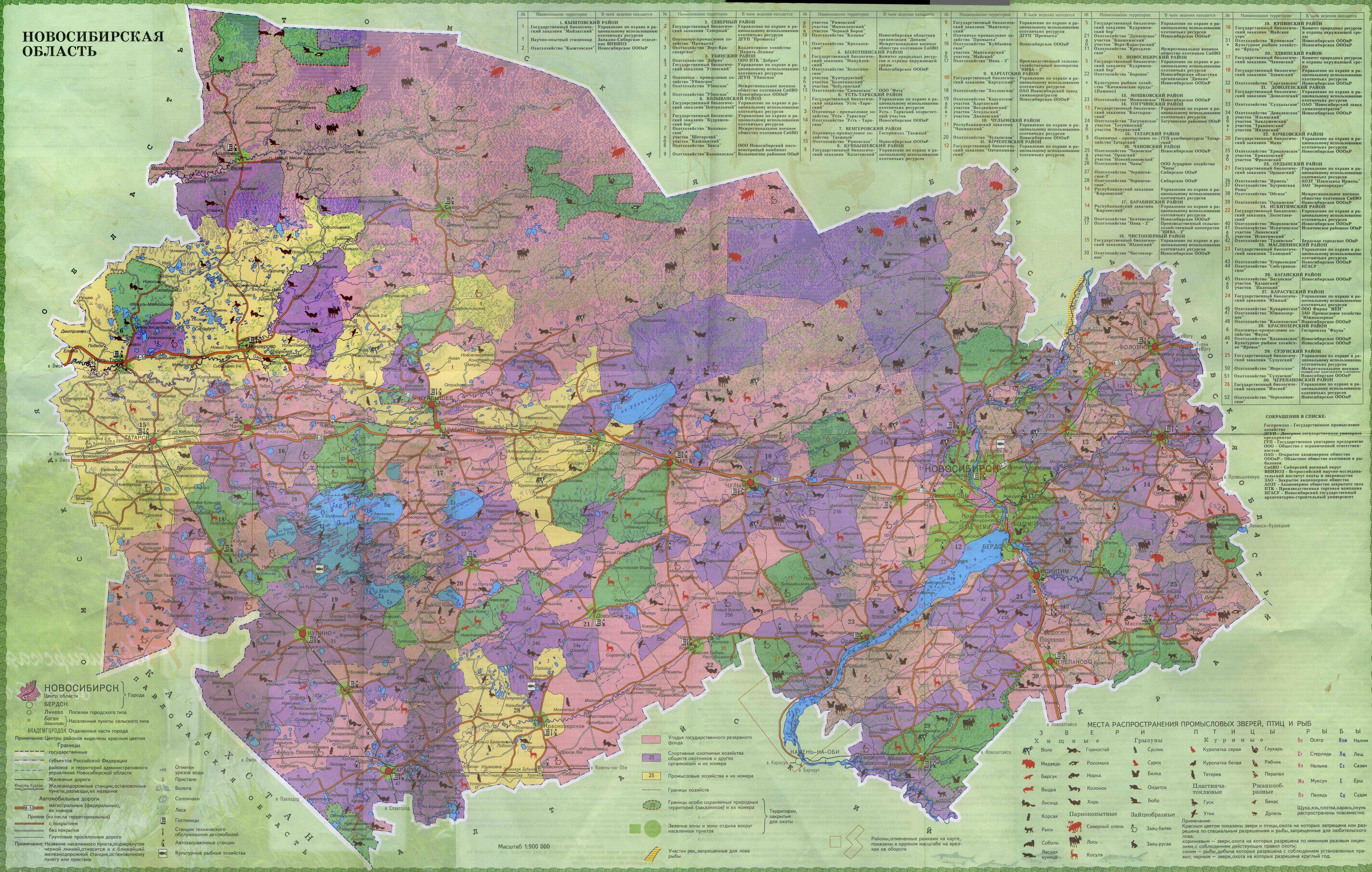 Карта Новосибирской области со спутника Подробная гугл карта